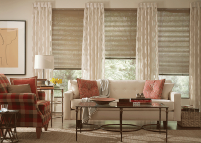lafayette-drapery-panels-with-horizontal-blinds1